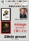004 Afis Ovidiu Pecican _ http://uniuneascriitorilor-filialacluj.ro/Poze/carti/Afis_Pecican_Antologia.jpg