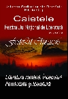 025 Caietele FestLit Cluj 2016 _ http://uniuneascriitorilor-filialacluj.ro/Poze/carti/Coperta_Caiete_FestLit_2016_ff.jpg